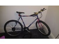 Peugeot Mountain Bike, inc. lock - open to offers
