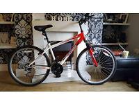 adult terrain mountain bike