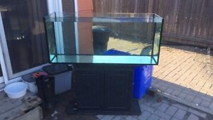 63 gallon  tank and stand