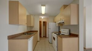 Dishwashers, Elevators, In-Suite Laundry and Pet Friendly