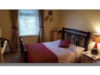 Beautiful double room available for mid week let. Near good public transport, shops and restaurants.