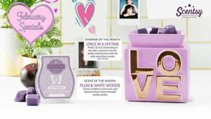 Scentsy's warmer of the month 10% off!