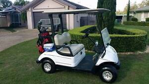 YAMAHA ELECTRIC GOLF BUGGY ABSOLUTE BARGAIN GOLF CAR Helensvale Gold Coast North Preview