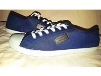 Mens Canvas Trainers / Shoes - Navy & White brand new vans