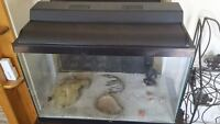 20 G Aquarium, great for reptiles, etc.