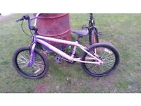 girls bmx bike serviced today very good condition ready to go great xmas present cheap £35