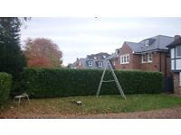 Gardening and landscaping services, experienced garden maintenance and design.