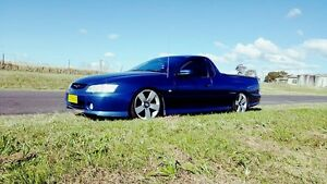 Vy storm ute Clarence Town Dungog Area Preview