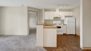 Spectacular 1 and 2 BD Rates and an Even Better Location!