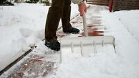Snow removal, lawn care, spring/fall clean up