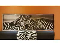 Zebra Wall Art Picture - Large