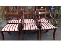 6 dining chairs,Regency style,mahogany,carved,2 carvers,cushion clean,no table