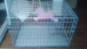 Galvanized Steel Dog Crate