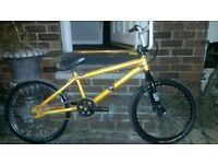 stunt bmx good condition fully serviced today has smaller crank and rear brake good tyres collection