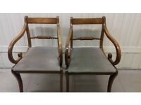 2 Regency dining chairs,solid Mahogany,carved,stable,2 carvers, no table