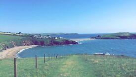 Cheap luxury lodge for sale in Devon! Reduced! Bargin! Huge decking! Beach!