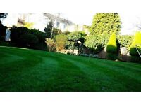 Gardening maintenance & Landscaping in London