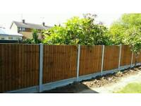 Fencing 5 featheredge panels ' concrete posts, gravel boards