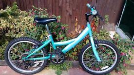 Girls mountain bike 6 gears