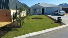Furnished room for rent- Banksia Grove Banksia Grove Wanneroo Area Preview