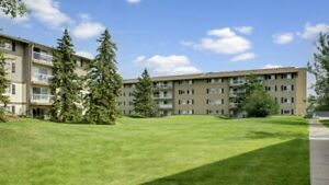 Courtyard view! 3 Bedroom available July! Call 780-484-8493