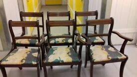 6 Regency dining chairs,solid Mahogany,carved,stable, 2 carver,cushion old but clean