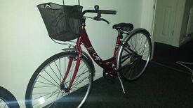 """womans 16"""" frame apollo mountain bike"""