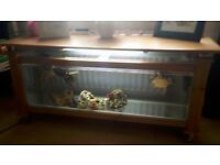 3 yellow belly turtles