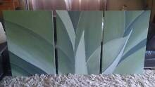 CANVAS PAINTING - Trio Agave Cleveland Redland Area Preview