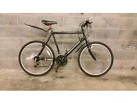 FULLY SERVICED RALEIGH MAX MAN LARGE FRAME BICYCLE