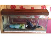 Selling my 4ft fish tank with light and filter