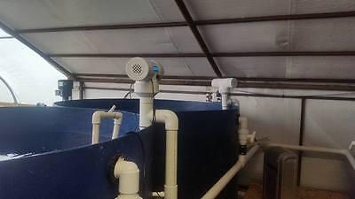 Aquaponics Aquaculture Aquarium Fish Tank Water Heater