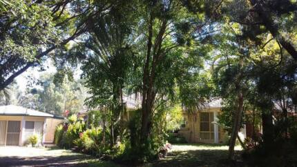 Huge Home in Moore Park Beach Area Bundaberg Surrounds Preview