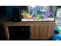 110 litre light up aquarium