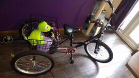 Children's bike/trike age 7+