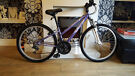 small ladies/teens apollo xc24 mountain bike