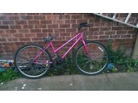 womans mountain bike for sale very good condition fully serviced today collection wakefield £40