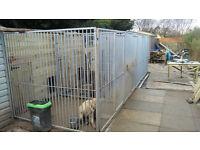 Bespoke dog kennel and run