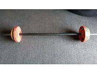 17.5kg Rep Set
