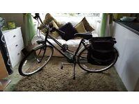 women's Trek bicycle