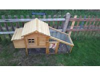 One hen & one roster with a chicken coop