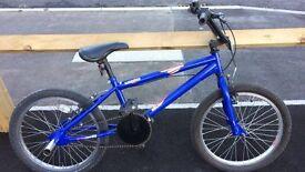 """blue bike 20"""""""