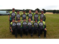 Softball team looking for players