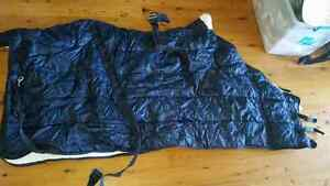 "Quilted waterproof rug 6 "" 3 in ex cond used once with belly band Wiley Park Canterbury Area Preview"