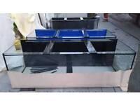 New 6ft fish tank ,Aquarium 6x2x2 10 mm 660l - free Delivery