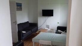 Large double room in a friendly flatshare