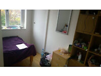 Single room to rent for professional woman