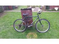 MOUNTAIN BIKES GENTS AND BMX BIKE REDUCED TO CLEAR GRAB YOUR BARGAIN JOB LOT, CLEARANCE, CAR BOOT