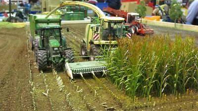 Maispflanzen grün Spur 1 Art.-Nr. 23288