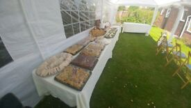 Buffets and hog roast available at affordable prices